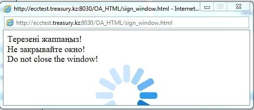 Не закрывайте окно - Казначейство клиент