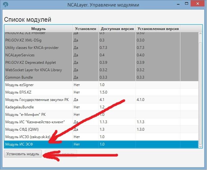 NCALayer - выбираем модуль ИС ЭСФ и нажимаем Установить модуль